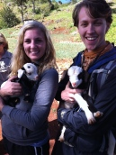 Jonathan and Katelyn loving on some baby goats we found Miguelson's grandparents' farm.