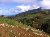 The beautiful mountains above the Pine Forest where Miguelson's family lives. Breathtaking....