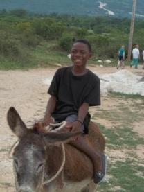 bicly on donkey